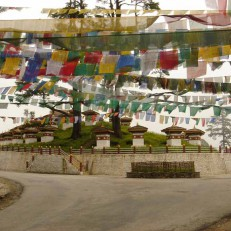 Dochula pass covered by Prayer Flag